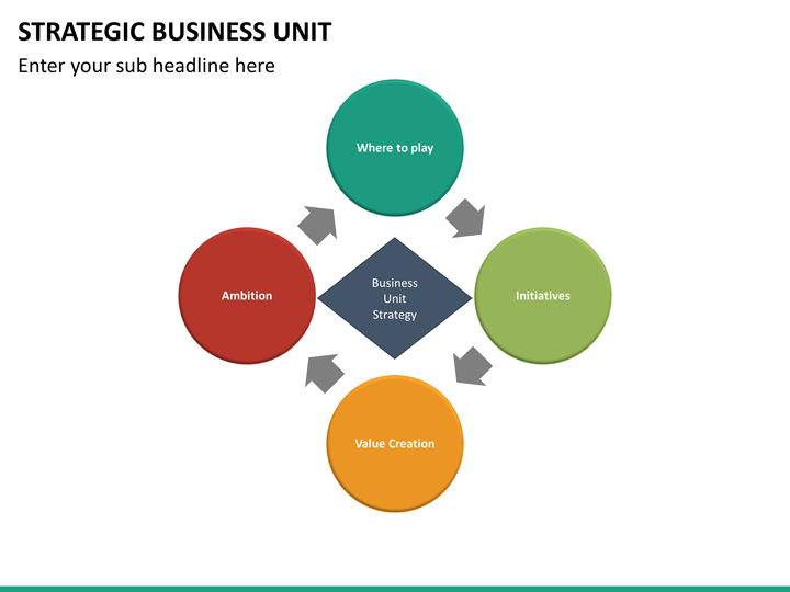 strategic business unit Investing in the economy strategic business units (sbus) the core developmental funding interventions of idc are carried out by 13 sbus, each focused towards the.