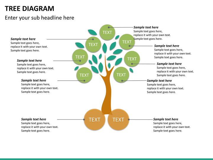 tree trunk diagram blank tree bubbler diagram
