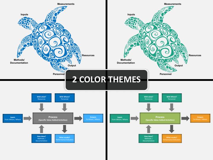 Turtle Diagram PPT cover slide