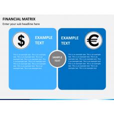 Financial matrix PPT slide 1