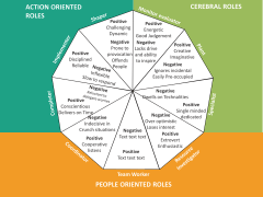 Belbin's team roles PPT slide 12