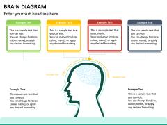 Brain diagram PPT slide 9