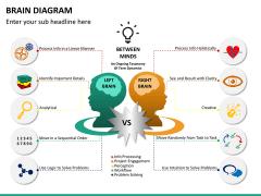 Brain diagram PPT slide 10