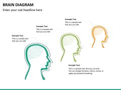 Brain diagram PPT slide 11