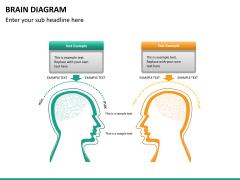 Brain diagram PPT slide 12