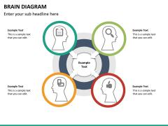 Brain diagram PPT slide 14