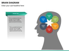 Brain diagram PPT slide 15