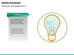 Brain diagram PPT slide 16