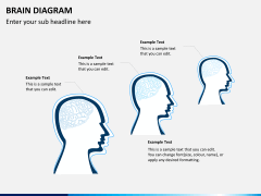 Brain diagram PPT slide 3