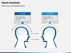 Brain diagram PPT slide 4