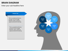 Brain diagram PPT slide 7