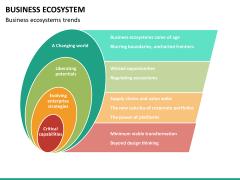 Business ecosystem PPT slide 28