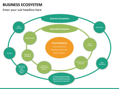 Business ecosystem PPT slide 17