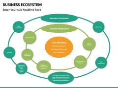 Business ecosystem PPT slide 17