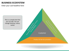 Business ecosystem PPT slide 19