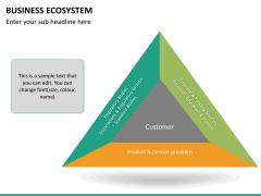 Business ecosystem PPT slide 19