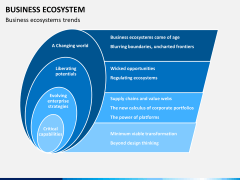 Business ecosystem PPT slide 13