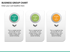 Business group chart PPT slide 16