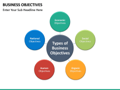 Business Objectives PPT slide 17
