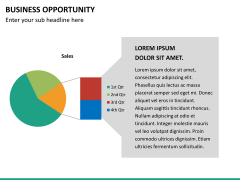 Business opportunity PPT slide 22