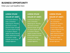 Business opportunity PPT slide 16