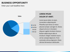 Business opportunity PPT slide 11