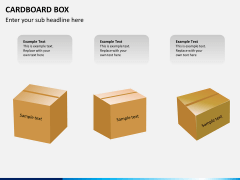Cardboard box PPT slide 4