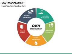 Cash Management PPT slide 15