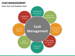 Cash Management PPT slide 17