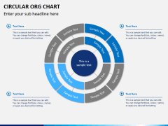 Circular ORG chart PPT slide 3