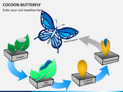 Cocoon butterfly diagram PPT slide 1