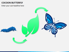 Cocoon butterfly diagram PPT slide 2