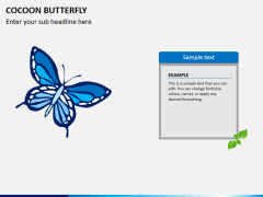 Cocoon butterfly diagram PPT slide 5