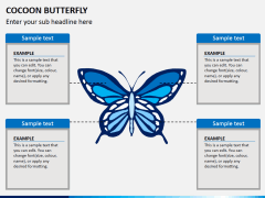 Cocoon butterfly diagram PPT slide 6