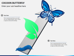 Cocoon butterfly diagram PPT slide 7