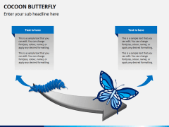 Cocoon butterfly diagram PPT slide 8