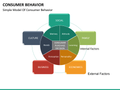 Consumer behavior PPT slide 17