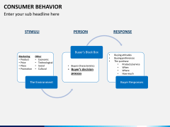 Consumer behavior PPT slide 13
