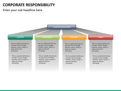 Corporate responsibility PPT slide 19