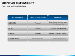Corporate responsibility PPT slide 8