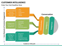 Customer intelligence PPT slide 10