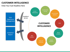Customer intelligence PPT slide 11