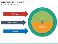 Customer intelligence PPT slide 13