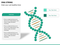 DNA string PPT slide 8
