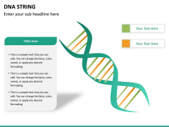 DNA string PPT slide 9