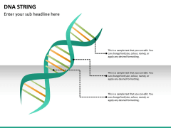 DNA string PPT slide 10