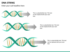 DNA string PPT slide 11