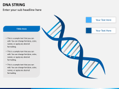 DNA string PPT slide 2