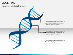 DNA string PPT slide 3