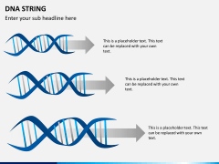 DNA string PPT slide 4